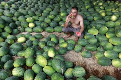 picturesoftheday:  A vendor ate a watermelon Tuesday at a market in Huaibei, in China's Anhui Province.