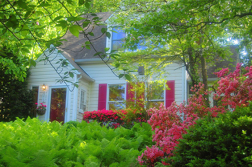 whimsicalraindropcottage:  This is where Little Red Hood lives (by sipa KV)