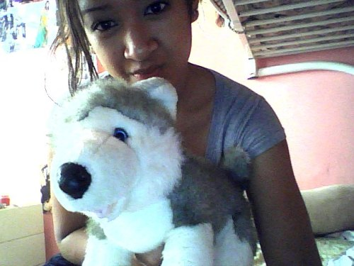 Look at what my dog brought into my room today its cute because she's a husky and I never knew we had this in the house aha