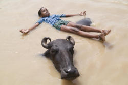 Young boy playing with a water buffalo in the Ganges River. Gavin Quirke, Lonely Planet Photographer Copyright Lonely Planet Images 2011