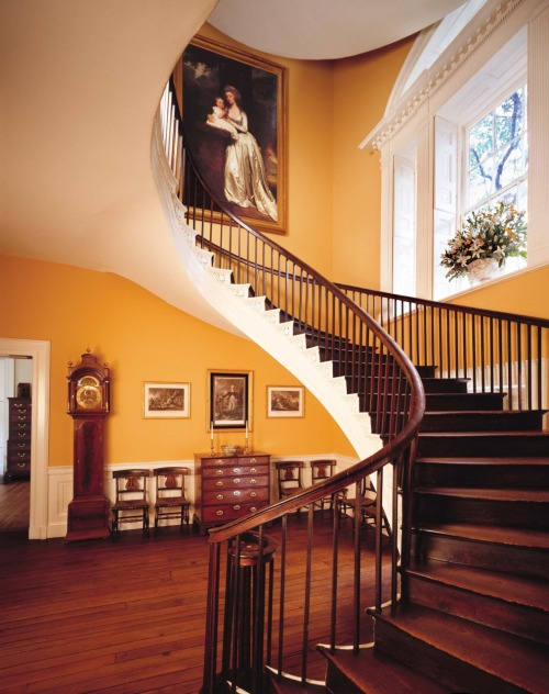 scurvyoaks:  fycharleston:  Floating staircase at the Nathaniel Russel House51 Meeting Street