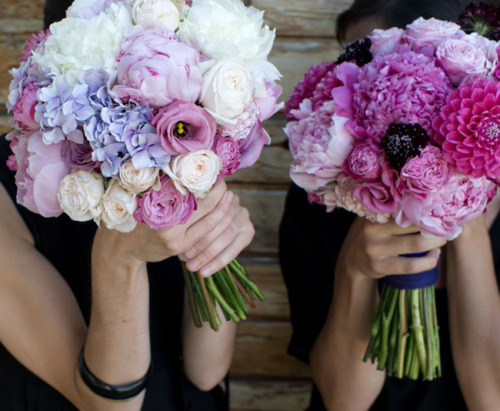 Barcelona floral studio Flowers by Bornay. Gorgeous gorgeous gorgeous photographs in all color palettes on this post at Plenty of Colour here.