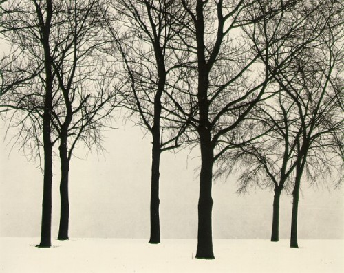 """Chicago""Photograph by Harry Callahan, 1950"