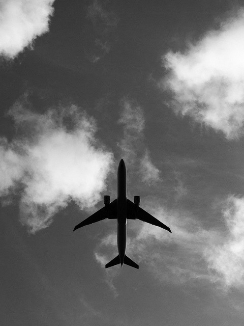 yellownoodles:  Airplane Overhead on Flickr.