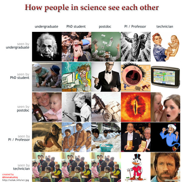 How people in science see each other (created by @biomatushiq)