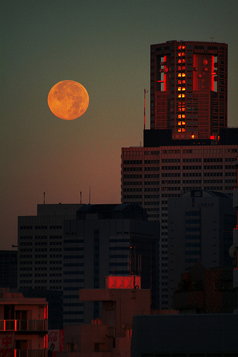 Red Moon (by guen-k)