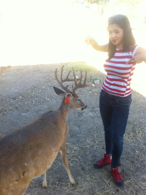 mrwhiteboii45:  @adrenalynntoao with baby boy on the deer farm
