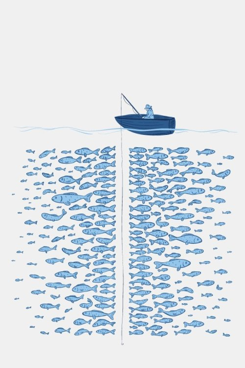 """There's plenty of fish in the sea.."""