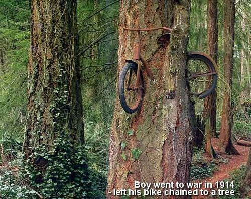 her0inchic:    A boy left his bike chained to a tree when he went away to war in 1914. He never returned, leaving the tree no choice but to grow around the bike.