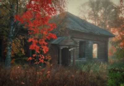 jeffersondells:  cabin in the woods…
