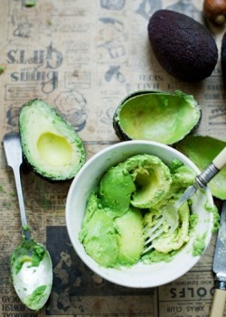 "justwanttobehealthyandfit:  Avocado  INFO ON THE AVO via raw-vegan.tumblr.com/ Avocados provide all of the essential amino acids, with 18 amino  acids in all, plus 7 fatty acids, including Omega 3 and 6. Avocados  contain more protein than cow's milk. A small avocado will provide more  usable protein then a steak because cooked protein in meat is denatured  and mostly unavailable to our liver, the organ that makes all of our  body's protein. Ripe, raw avocados furnish all the elements we need to build the  highest quality protein in our bodies. Avocado is an enzymatically-alive  fruit, it ranks as the most easily digested rich source of fats and  proteins in whole food form. The ripening action ""predigests"" complex  proteins into simple, easily digested amino acids. (From Living  Nutrition Magazine Vol. 11 http://www.livingnutrition.com) Other than avocados, where can a person get their protein? Out of the 22 amino aids found in the body, 8 must be derived from  food. All 8 are abundantly available in raw plant food, especially  greens. As suggested by David Wolfe, ""green leafed veggies are the true  body builders."" Examples of animals who build enormous musculature on green leafy  vegetation include: gorilla, giraffe, hippo, elephant, horse. People  think they need flesh protein to build flesh protein. If that were true  then cows would need to eat flesh to get protein. Usable protein is the  key. Cooking denatures protein molecular structure and creating free  radicals, which destroy enzymes, amino acids & other cellular  elements."