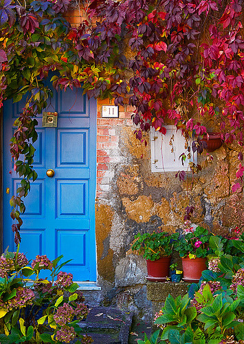 Colors- Tuscany, Italy (by PHOTOBUSTER74)