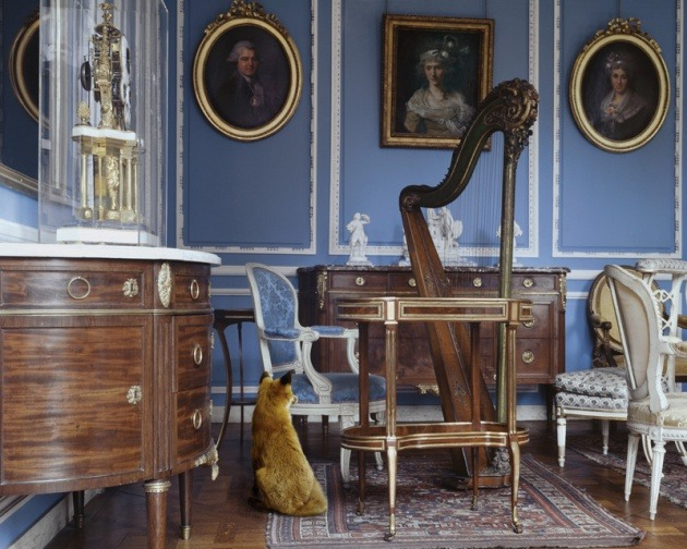 taxidermy-in-art:  Karen Knorr, The Blue Salon Louis XVI 2, Musée Carnavalet, 2004-2006From the Fables series90 x 70 cm