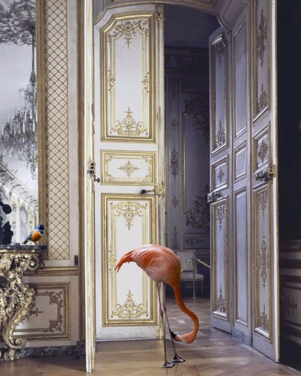 Karen Knorr, The Battle Gallery, Château Chantilly 2006 - 2007From the Fables series90 x 70 cm
