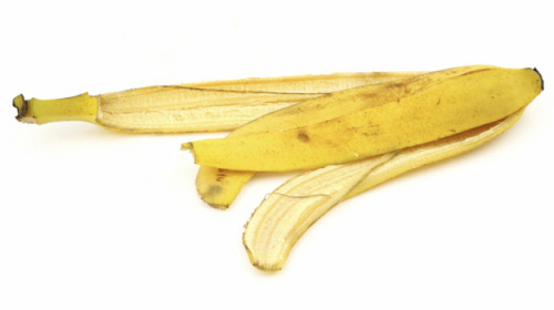 Slippery Banana Peels Could Be a Savior for Polluted Water: Eliza Barclay; NPR [2011]
