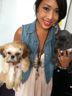 Puppies in the office. And an outfit post, all in one!!   Levi's denim vest and a vintage slip Ekom bought on one of her journeys.