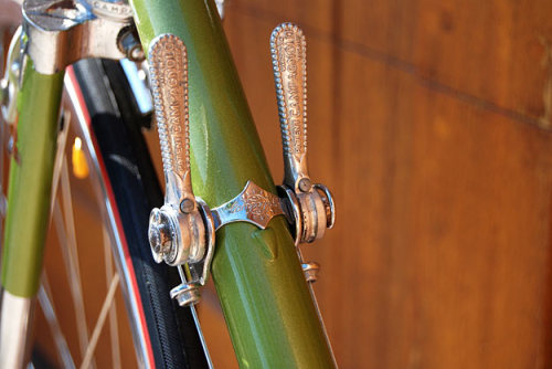 thatsgoodsoup:  (via Raleigh International) Awesome shifters or awesomest shifters ever? Yeah, I thought so too.
