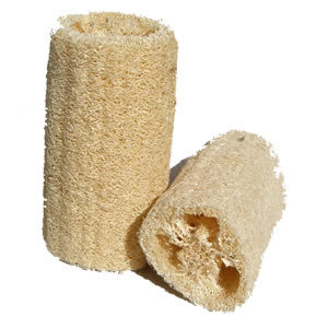 Every now and then, a loofah comes along that just blows you away entirely - forcing you to entirely re-evaluate your preconceptions about what a loofah should be. Unfortunately, this loofah merely plays to the advantages of its own spongey framework without ever making the effort to raise itself above the competition. By all accounts it's a standard loofah, and this sadly means you'll be dealing with all of the negative sides that fans have come to expect. Low water retention and a course texture conspire to create a cleaning tool that never escapes its own lukewarm destiny. 4/10