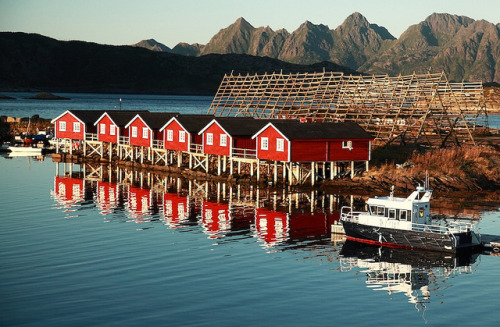 tpr2:  norvegia - norway - lofoten by peo pea on Flickr.