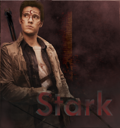 houseofnightfanclub:  Drew Roy as Stark (my edit)