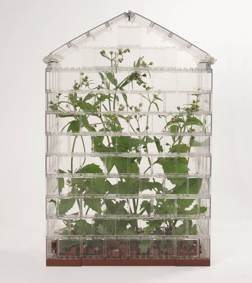 dostuffdecor:  Build your own greenhouse… with LEGO! (via Design Milk)  Two of my favorite things.
