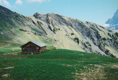 kari-shma:  28 (by Stefan Steins)