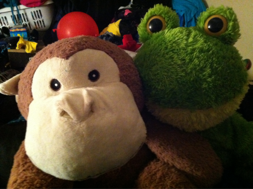 monkeyylove:  My giant monkey and frog chilling together :) monkeys name Is Tubz and frogs name is Zuma !