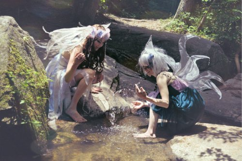 even-in-my-darkest-hour:  faeries were a massive part of my childhood <3  Faeries are still all around us, we have just grown to old and wise to see them or pay them attention. Take the time to look for them, they're there still. <3s