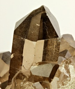 mineralia:  Smoky Quartz from France