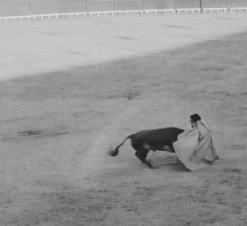 BullfightEl Puerto de Santa Maria, Spain