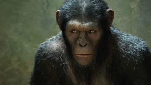 Apes remain top of the US box office Rise Of The Planet Of The Apes continues to perform strongly for Fox, having enjoyed a second weekend on top of the US box office. Whilst many had been surprised by the strength of its opening weekend, the monkey-led spectacular lost less than half of its original takings in round two, with $27.5 million pushing its domestic total over the $100 million mark.However, the apes weren't to have it all their own way, with literary adaptation The Help pulling in $25.5 million to take second place…