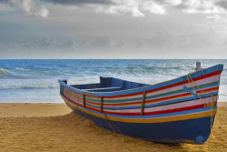 crushculdesac:  Kerala fishing boat (by jensvins - gone shooting)