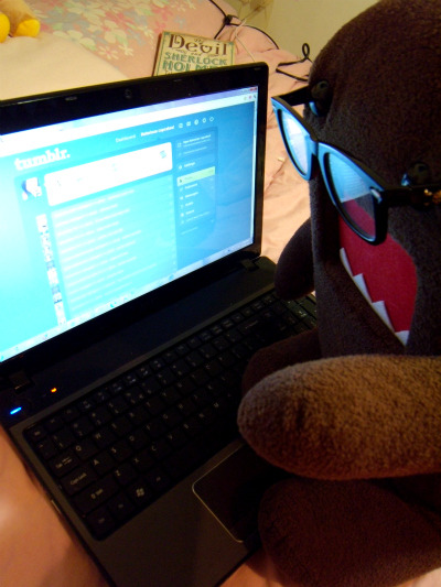 domo kun stalking my tumblr again..