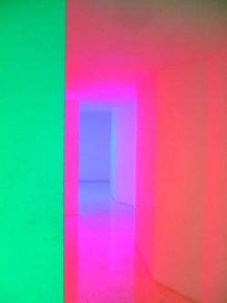 sneguroschka:  Neon Doors of Perception