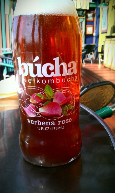 probably the best brand & flavor of Kombucha I've tried to date.had it today at wildberriesp.s. doesn't my phone take great pictures? i'm impressed.