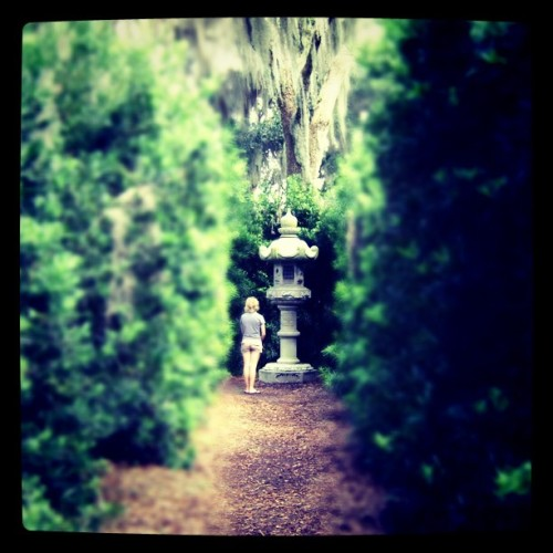 Peaceful (Taken with Instagram at Bok Tower)