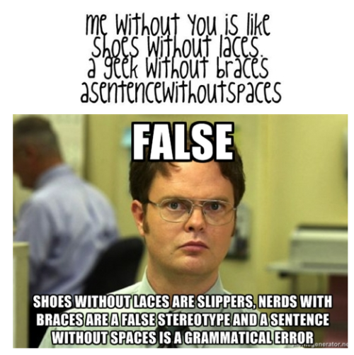 fadedwhite:  meme-spot:  Schrute http://computersaysnooo.tumblr.com/  I just laughed so hard at this.