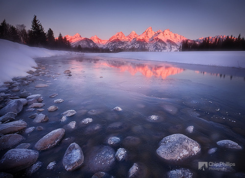 shellsonthebeach:  Snake River Sunrise by Chip Phillips on Flickr.