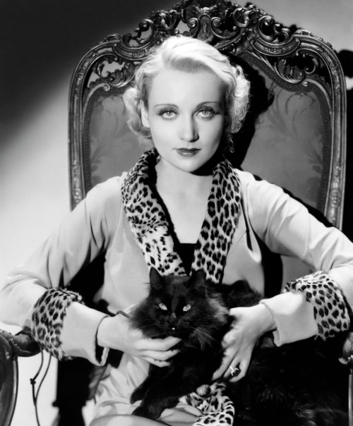 Carole Lombard with a cat, circa 1930 Image Source