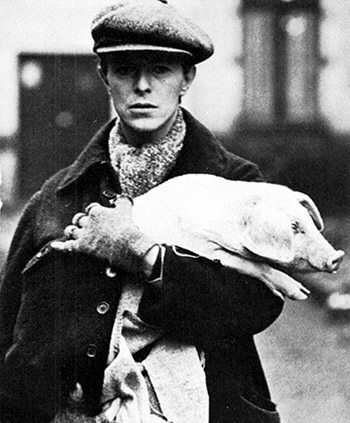 [Image is a black and white photo of David Bowie holding a pig.  End description.] It's David Bowie holding a fucking pig.  What do you want?