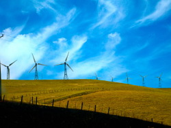 'The Alternative' Wind turbines turning atop the rolling hills outside of San Francisco. Keep in mind, the alternative.