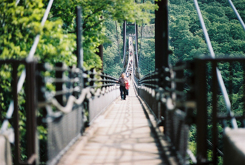 wolvesatmidnight:  bridge (by cola1031)