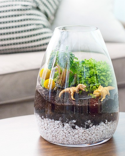heartinsideapenny:  I need a dino terrarium!  Aubrey… I shall get you one. :)
