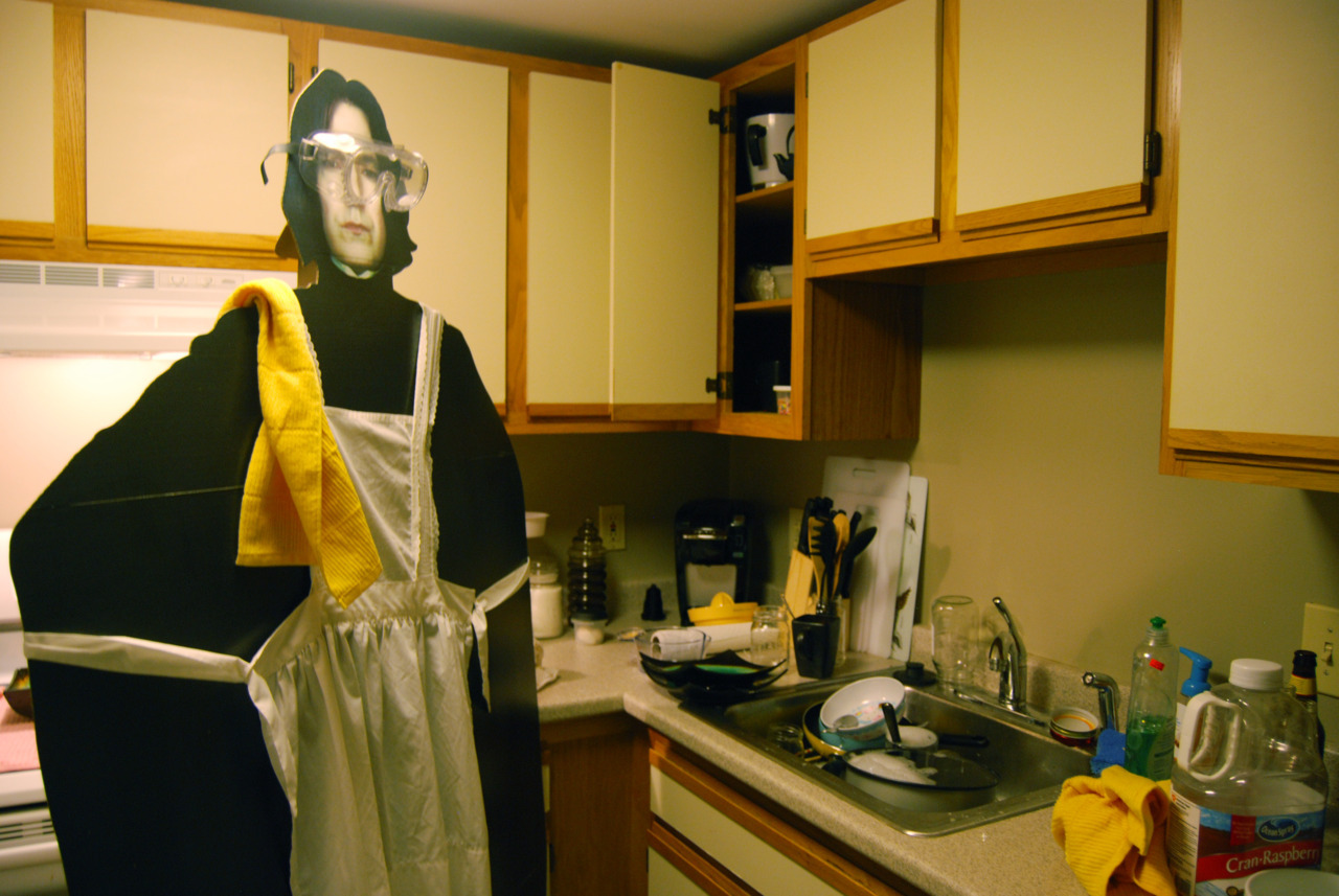 Snape prepares to clean his kitchen.