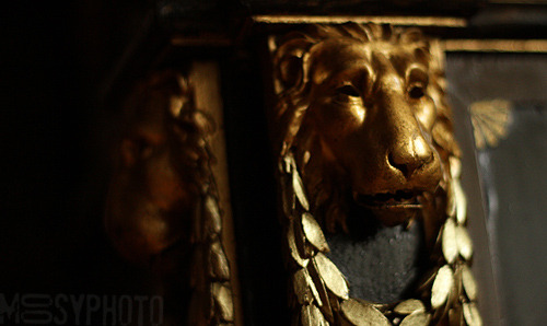 lion, osterley house jul 2011