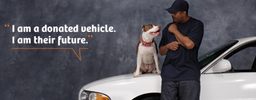 "The Humane Society has a car donation program, One Car One Difference, where you can donate a car (in any condition) and they will auction it off and use the proceeds for their anti-dog fighting efforts. Cool program but REALLY I'm posting this because that pic is just totally adorable! Isn't it? The dog is all, ""OMG YOU'RE SO AWESOME I LOVE YOU TELL ME MORE."" But wait, there's more cuteness. They have this adorbs story about a little boy and his pit: Terrance and Elmo diverted from dogfighting  Elmo was about to be sent into the horrific world of  dogfighting. His master, then 11-year old Terrance, had seen it before  and didn't understand that it was wrong. It was just what you did with  your dogs. But Elmo and Terrance are no longer on a path to dogfighting.  In fact, they are now prime examples of how The Humane Society of the  United States is ending dogfighting, one dog owner at a time. Star students at dog training school ""When I first got Elmo, I was thinking about dogfighting,""  says Terrance, now 13. ""Then I ran into a man with a dog and a dog  training school.""The man was from HSUS' End Dogfighting program. He  changed Terrance's attitudes and behavior, and helped prevent Elmo from  becoming a tragic victim. Terrance continues. ""I taught Elmo how to sit and stay and be  a well behaved dog. Instead of teaching him the wrong thing, going out  there and killing another dog, I'm teaching him the right thing, and  encouraging him to be a good dog. He doesn't mistreat me, and I don't  mistreat him."" The young dog trainer and responsible dog owner  concludes, ""Be great with your dog, and no dogfighting!""  Holy cannoli try not to die of adorable overload."