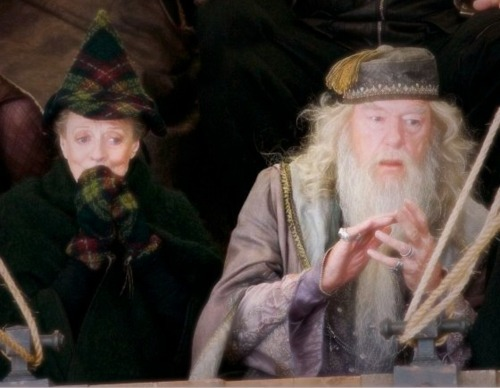 lucylovesmemore:  McGonagall and Dumbledore - I want her hat and mittens!