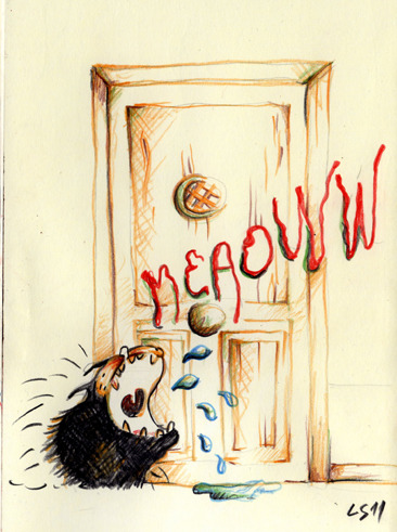 Meaoww!!!! By Lapin Sauvage 2011 Hey friends let me introduce you to Chipi, our sweetie kitty! Do you have a cat…? =:)