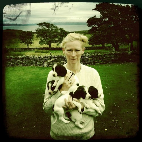 Roger Ebert just posted this on his Facebook page.  Tilda Swinton with puppies.  My day is officially off to a great start.