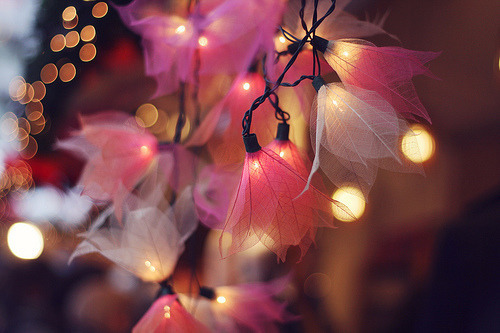Pink Flower Fairy Lights.